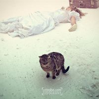 snow, catz and the white girl by cetrobo