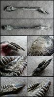Emu Leg by CabinetCuriosities