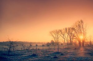 One Cold Morning II by jva3
