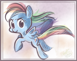 Rainbow Dash by th351