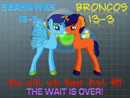 Super Bowl 48: Broncos vs Seahawks by j4lambert