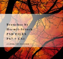 Branches brushes - PSD files by Hermit-stock