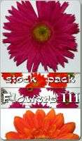 Stock Pack - Flowers 3 by kuschelirmel-stock