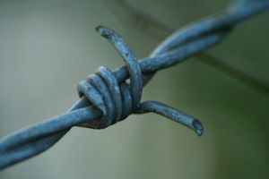 Barbed Wire 447921 by StockProject1
