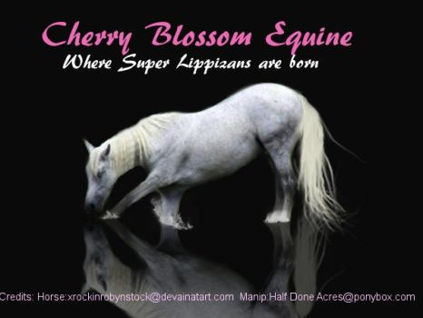Made for Cherry Blossom Equine by Horsey-Girly