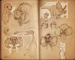 Sketchbook_Spiders by Ikameka