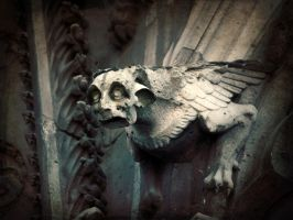 Gargoyle, Notre Dame de Paris by thren0dy