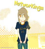 Networking! 1 Cover by Mayburger
