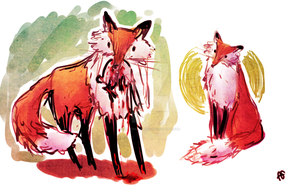 Foxes by Federica-Amico