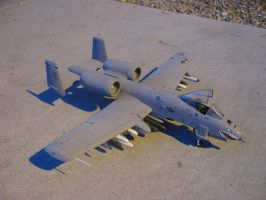 1/48 Scale A-10a Thunderbolt (top) by Coffeebean2