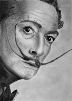 Salvador Dali by photonline