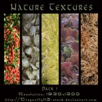 Nature Textures Pack 1 by BFstock