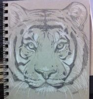 Tiger speed sketch by nightspiritwing