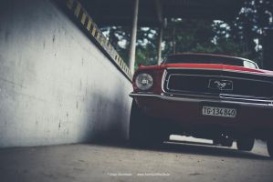1968 Ford Mustang by AmericanMuscle