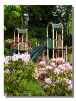 Rhododendron Park Playground by WillFactorMedia