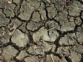 Mud texture1 by crystal-stock