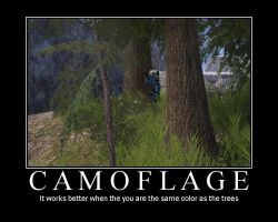 Camoflage by InhumanFrog
