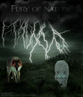 Fury of Nature by Unknown-Diva