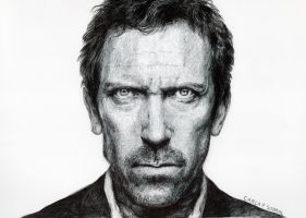 dr. house by carura