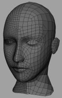 Female Face Topology by PyrZern