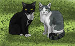 Kitty Toe Zoes and Tommy by 100percentWOLF-LOVER