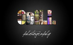 onill photography by EvaMir