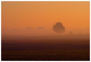 Mourning fog by Necrotrup