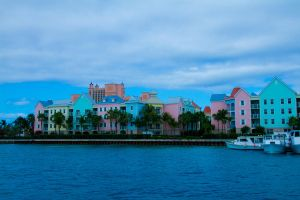 Bahamian pink by today-morning