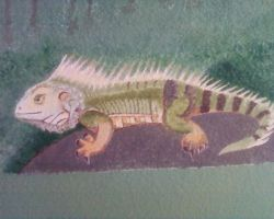 Mural Painting Iguana by rwcombs