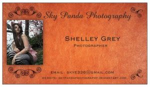 Photography Business Card by SkyPandaPhotography