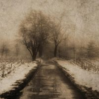 ThE PaTH II by DilekGenc