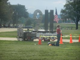 9-11 Remembered, Tea Party Style by Flaherty56