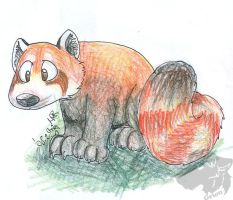 redpanda by Grion