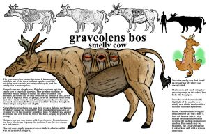 Graveolens Bos smelly cow by JMarcDodsonJr