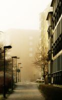 Foggy morning by Schneltser