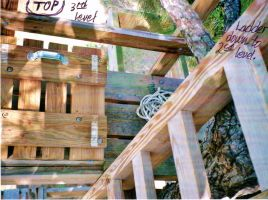 Our Treehouse Built by My Husband {Photo 37} by Empress-XZarrethTKon
