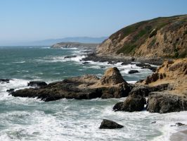Bodega Head by paploothelearned