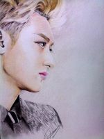 Tao 2 by Bananasheep94