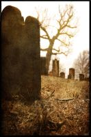 In the churchyard pt 2 by PinEyedGirl