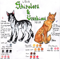 Shirotora And Urashima Reference Sheet by ARVEN92