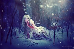 long winter by LilifIlane