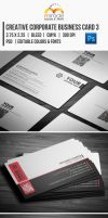 Express Business Cards Bundle #3 by EgYpToS
