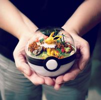 Poke Ball Terrarium - Jolteon - Medium by TheVintageRealm