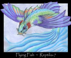 Flying Fish by Reptilia-7
