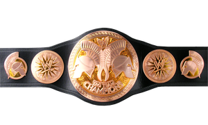 WWE  tag team championship by leonrock84