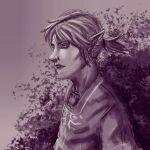 Ponytail Link by lionheartslayerX