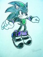 :A.T: Darg the Hedgehog Cyborg by princess06