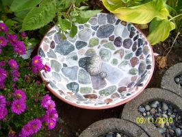 bowl in the garden by rubies52