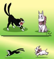 Like Cats and Dogs by noot