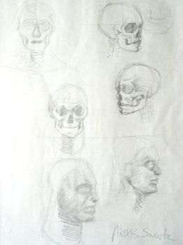 Skulls 2006 by The-original-ninja-c